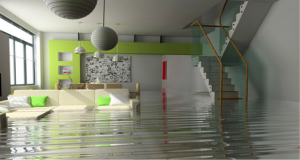 How to Deal with Water Damage in Your Home or Business