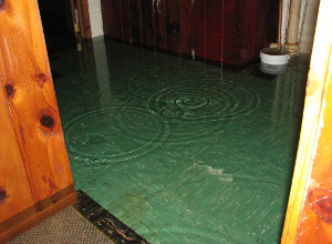 Water Damage Image