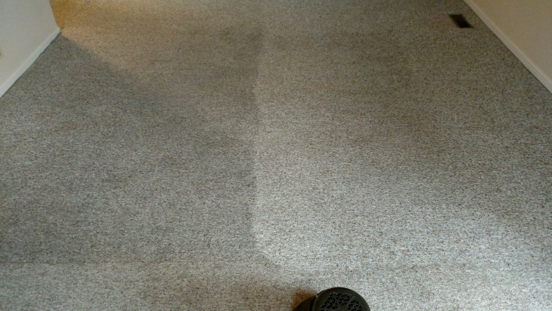 Before and After Carpet Cleaning Image